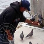bird-feeder086