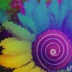 flower-4 copy